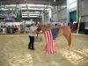 2013-08-28-americana_fahne-klein_