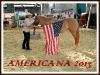 americana-2013-klein_