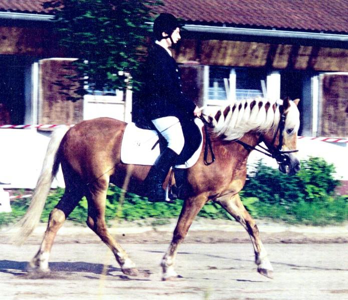 1996 07 t hanfeld anke