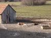 2004-04-anke-und-die-babys-schlafen