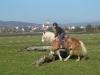 2011-11-06-berittf-claudia-springen-01
