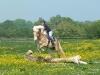 2011-04-rp-springen-andrea-02-a