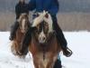 2010-02-schlittenfahren-03