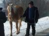 2012-02-12-askan-spaziergang-klein_