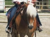 2011-08-hausturnier-ewt-th-sandra-02