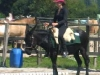 2011-08-hausturnier-ewt-th-sarah