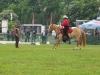 2015-05-15 Pferd inter 08.jpg