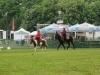 2015-05-15 Pferd inter 10.jpg