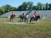 2015-05-16 Pferd inter 004.jpg