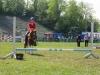 2015-05-16 Pferd inter 12.jpg