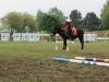2015-05-17 Pferd inter 17.jpg
