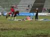 2015-05-17 Pferd inter 18.jpg
