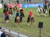 2015-05-17 Pferd inter 20.jpg