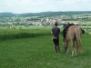 2012-05-29-burgenritt-23-klein_