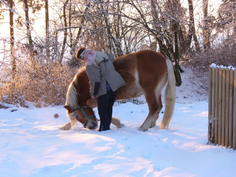 2006-01-arwen-mit-birgit-2