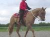2005-05-tdot-kl-bruder