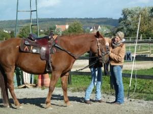 2013-10-17 TrAss 03