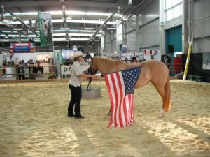 2013-08-28 Americana_Fahne